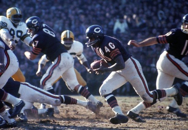 gale-sayers-running-bears